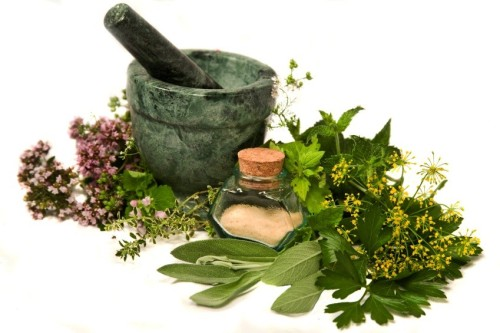 5 Must-Have Herbs for Winter Illness