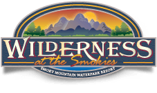 Wilderness at the Smokies and the New WALL Waterslide