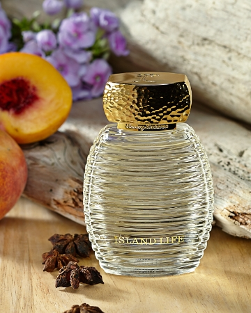 Fragrance Collection For The Holidays