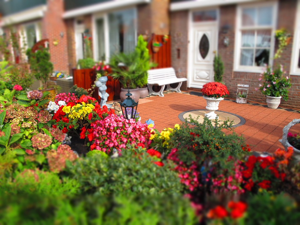 Building Your Dream Garden On A Budget