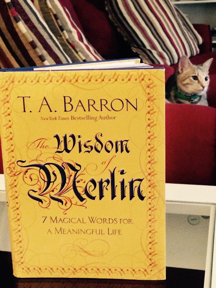Book Cover Forros Meaning : The wisdom of merlin bringing meaning to your life
