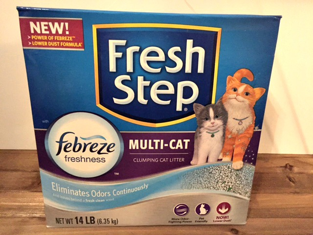 The Incredible Tag Team Duo of First Step And Febreze