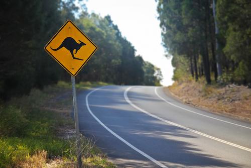 4 Epic Australian Road Trips