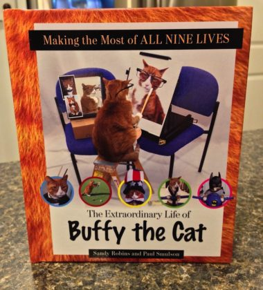 Making The Most Of All Nine Lives by Sandy Robins and Paul Smulson