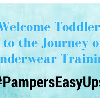 Toddlers Journey To Underwear Training