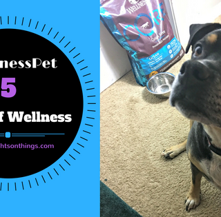 5 Signs Of Wellness In Your Dog #WellnessPet