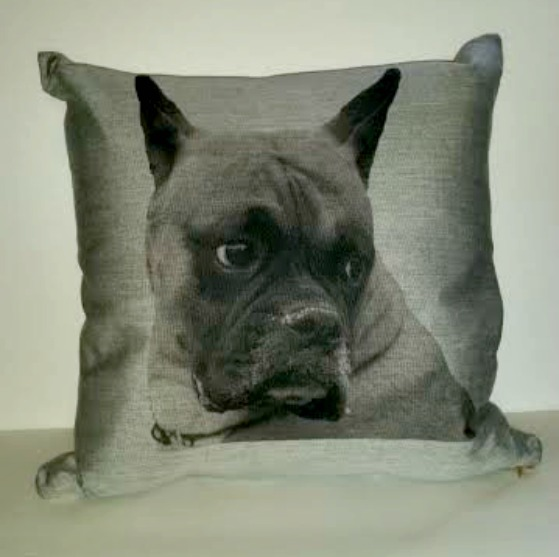 cristions-pet-pillow