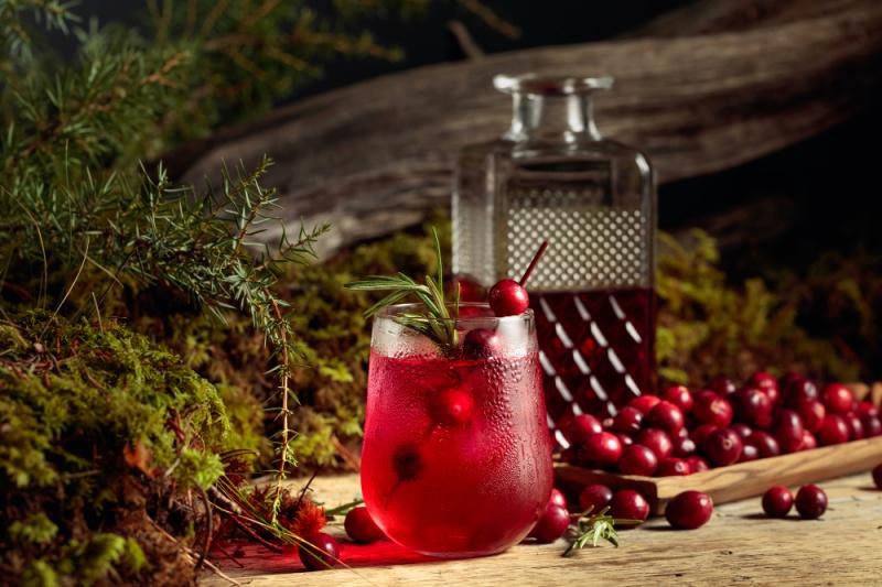 Festive Cranberry Margaritas