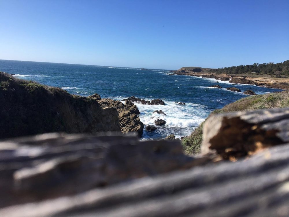 Point Lobos Park