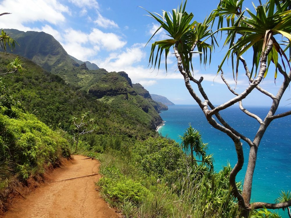 Kauai Offers Unique Family Adventures
