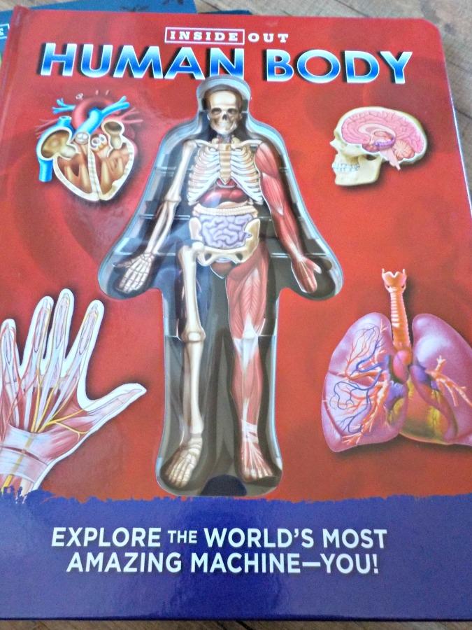Cool Books Human Body