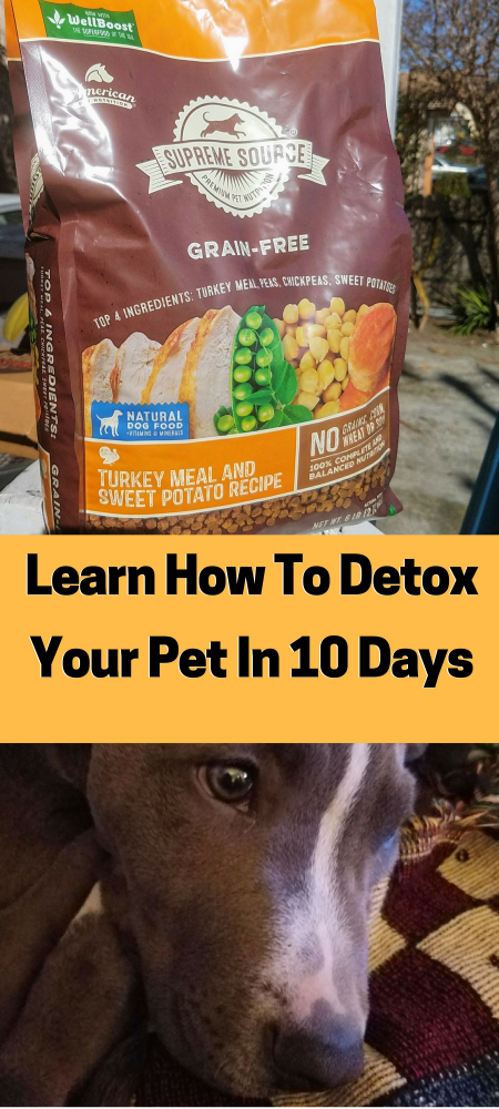 Learn How To Detox You Pet In 10 Day -Free Coupon too!