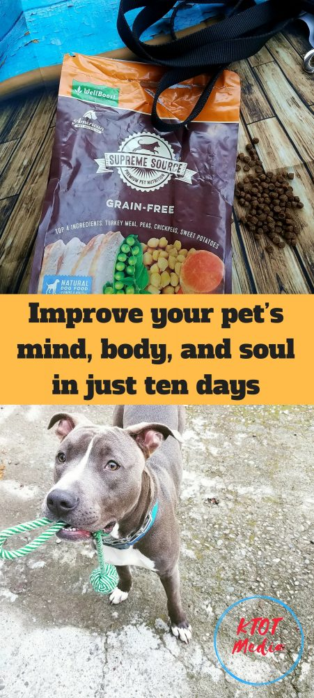 Read how Harley handled the 10 Day Pet Detox! #SuperFoodSwitch