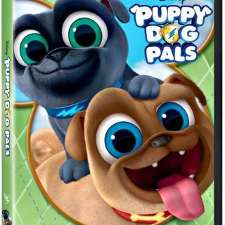 Join Fun-Loving Pug Puppy Brothers Bingo and Rolly On Paw-Some Adventures