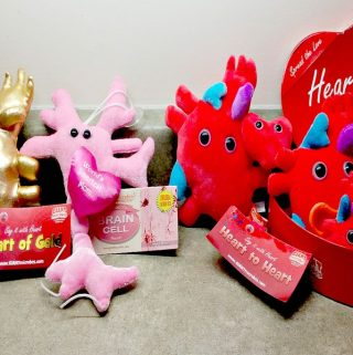 Why Not Give Mom A Heart Of Gold From GIANTmicrobes For Mother's Day?