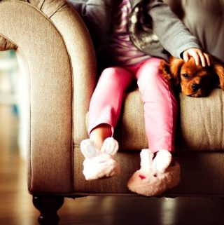 Getting Your Kid's First Best Friend: Why You Should Get a Dog