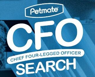 First Ever Search For Chief Four-Legged Officer At Global Company