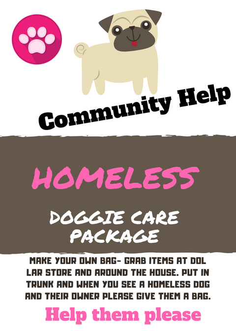 Flyer asking the community to help with homeless dog care package