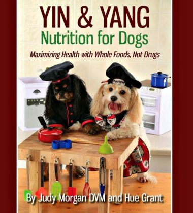Prepare Food That Your Pets Are Going To Love