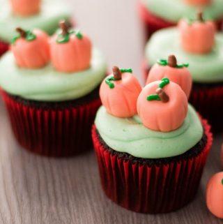 Pumpkin Patch Chocolate Cupcakes Recipes
