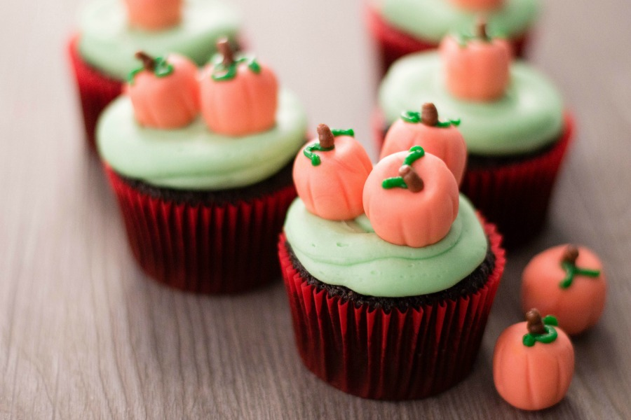 Pumpkin Patch Chocolate Cupcakes Recipes
