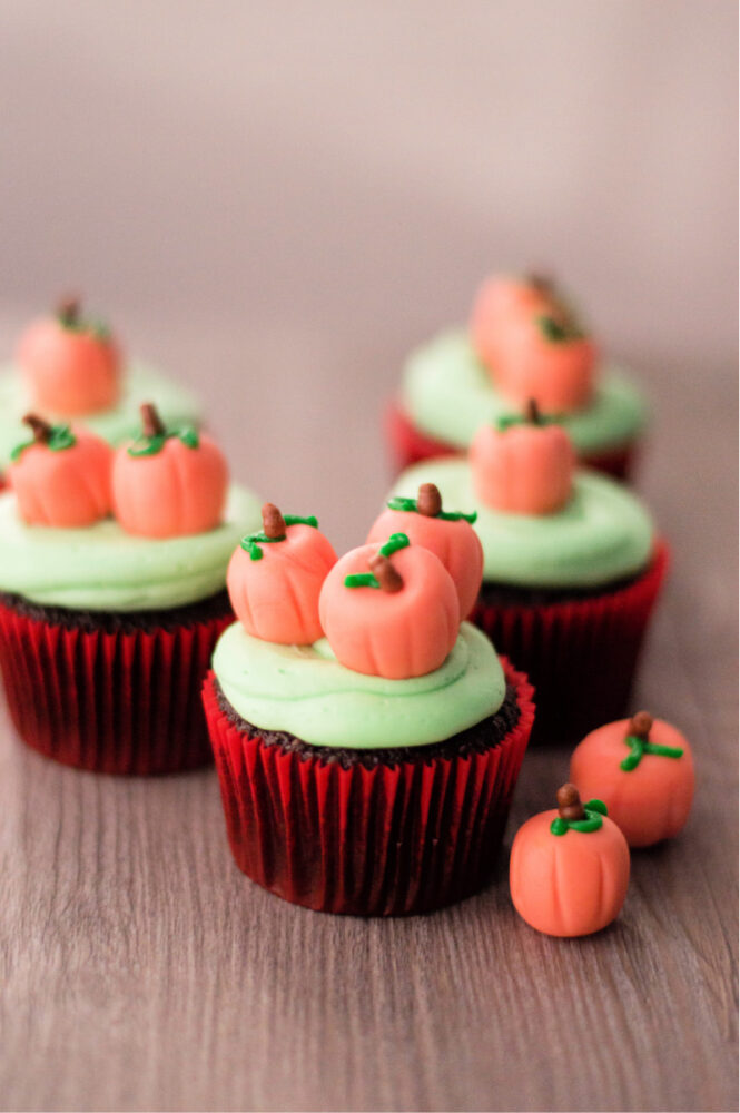 Pumpkin Patch Chocolate Cupcakes