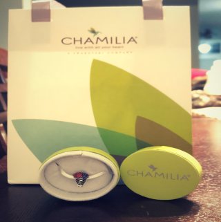 Spice Up Your Bracelet With Chamilia Charms