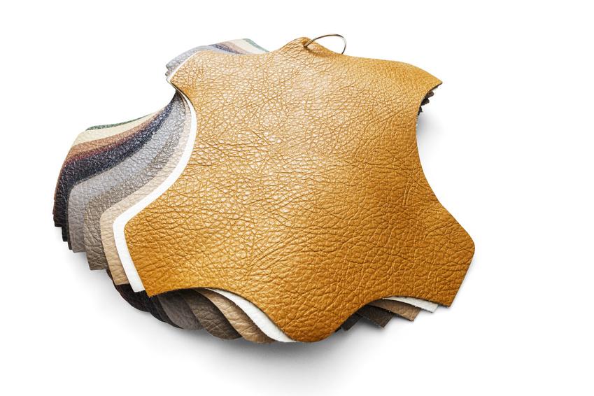 vegan mushroom leather