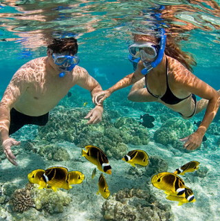 4 Top Things to Do in the Cayman Islands
