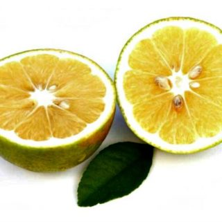 Embrace The Prized Citrus Superfruit From Italy