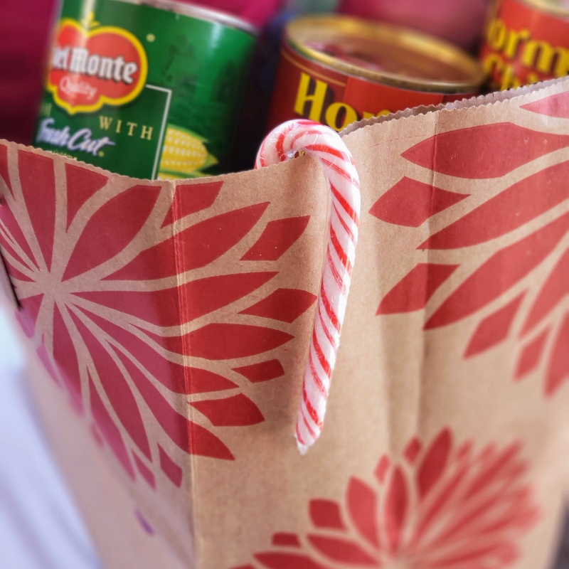 Grocery bag filled cans and pillow
