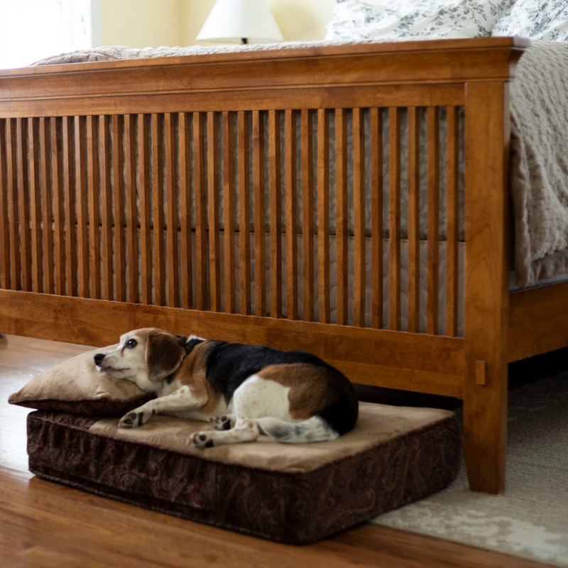 Give Your Pet A First-Class Bed For The Christmas