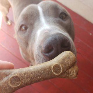V-dog's Breathbone chew treats