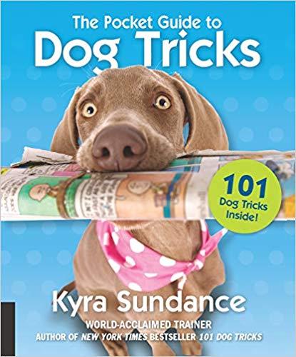 ocket-Guide-Dog-Tricks-Activities