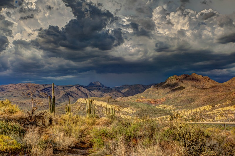 The 5-Step Arizona Land and Home Buyer's Guide