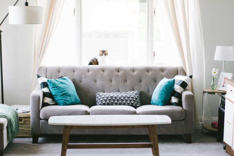 8 Tips To Transform Your Rental Property Into A Home