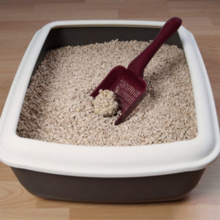 10 Ways For Controlling Cat Litter Tracking And Scattering Everywhere