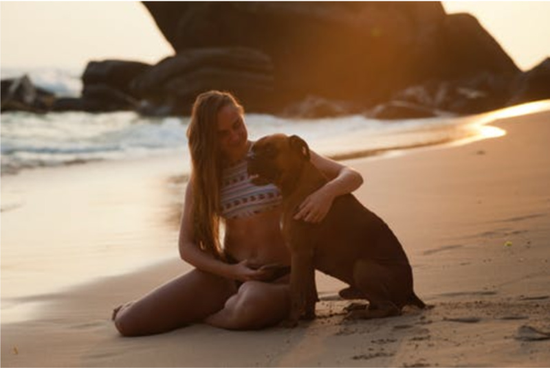 Easiest Ways To Bring Your Pet On Vacation