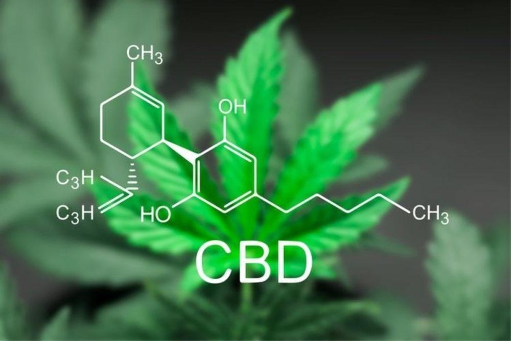 CBD oil leaf