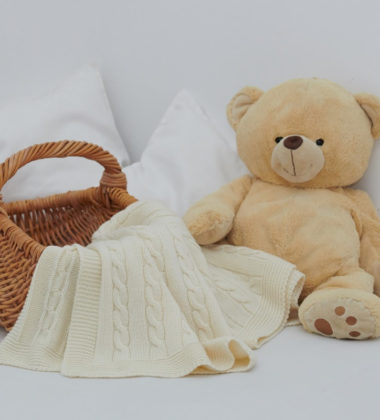 teddy bear, blanket and a basket