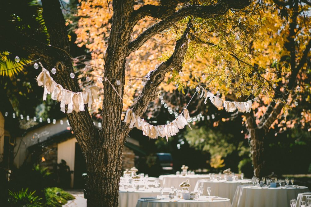 4 Top Tips for Cleaning up after a Garden Party