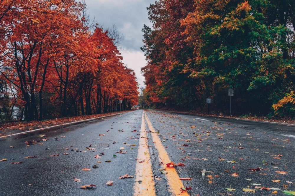 Key Factors To Remember For Your Fall Road Trip
