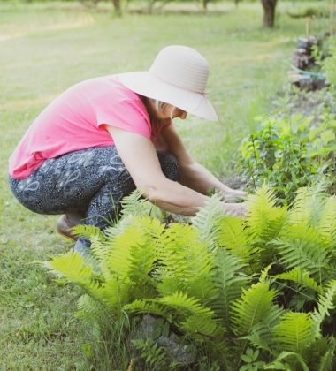 4 Reasons Why Gardening Is Great for Mental Health