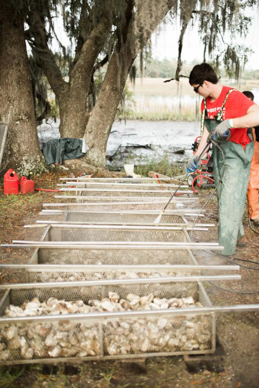 Shuck, Sip And Give Back At The 37th Annual Lowcountry Oyster Festival