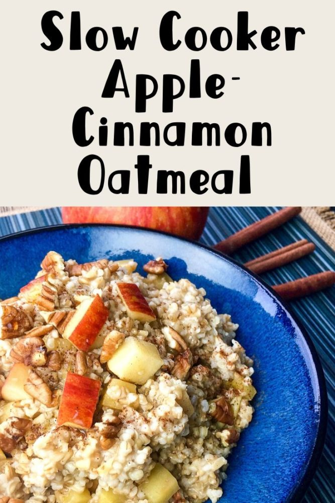 Apple Cinnamon Oatmeal in a bowl