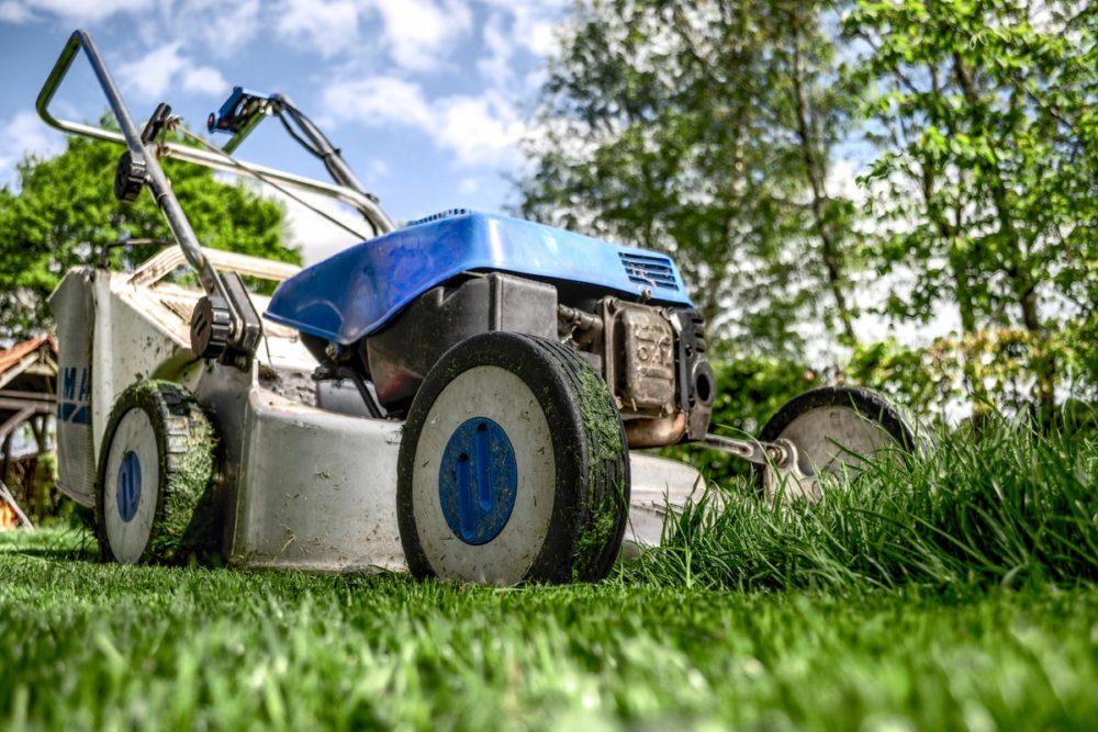 7 Tips For Landscaping Your Garden