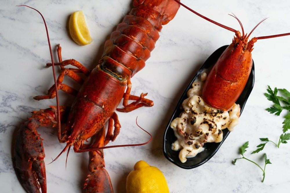 Lobster Lover's Are In For A Real Treat Come Valentine's Day
