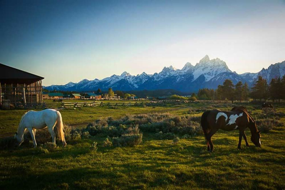 Introducing A Curated Group Of The Best Ranches From The West