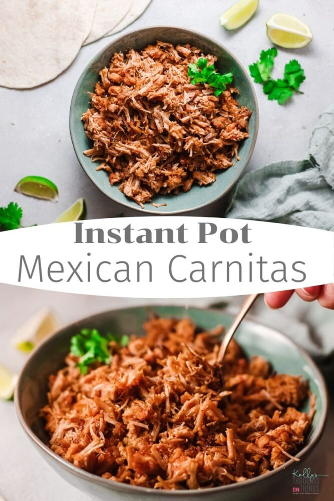Instant Pot Mexican Carnitas in a bowl on a table