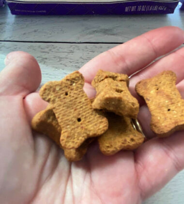 Dog treats in a persons hand